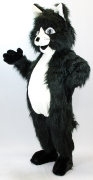 Maskottchen Katze schwarz
