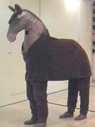Pferd für 2 Personen
