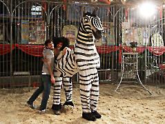 Zebra Kostüm für 2 Personen