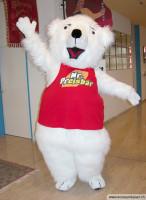 Eisbär Preisbär